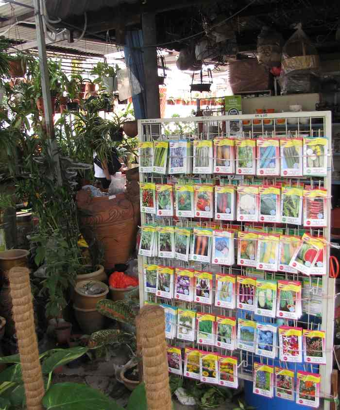 photo of seed packages and more, inside the nursery