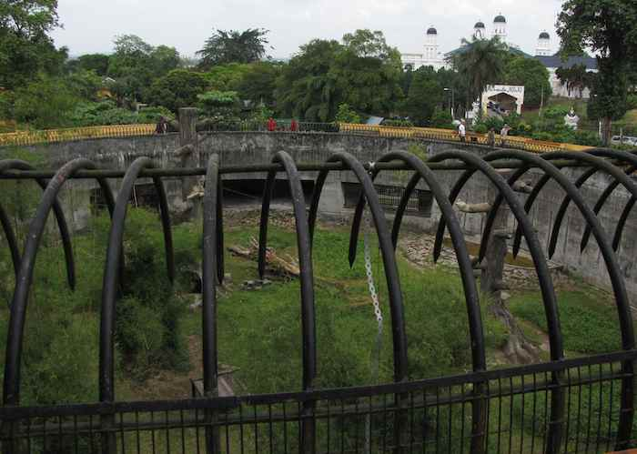 photo of the chimpanzee Enclosure at the JB Zoo