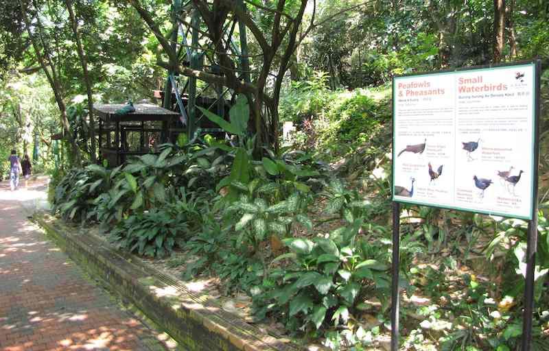photo of pathway in Kuala Lumpur Birdpark
