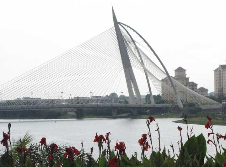 photo of suspension bridge in Putrajaya with flowers in the foreground