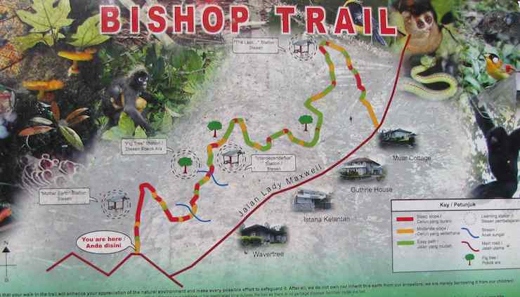 image of map of Bishop Trail