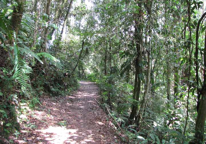 photo of Hemmant Trail Fraser's Hill
