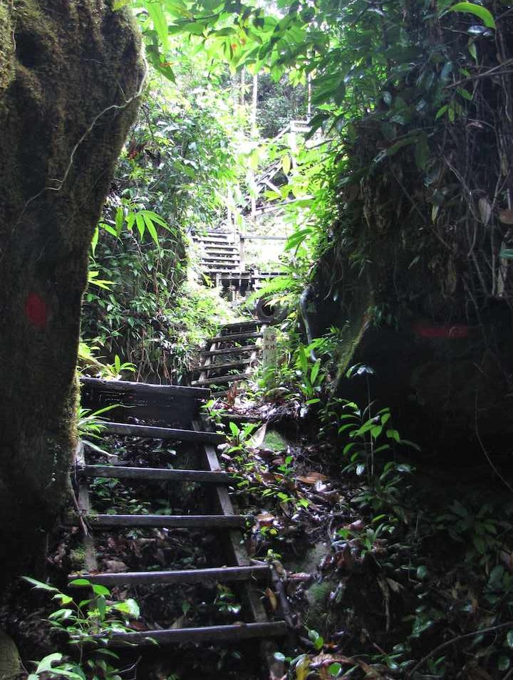 photo of Steep trail steps on the Lintang trail