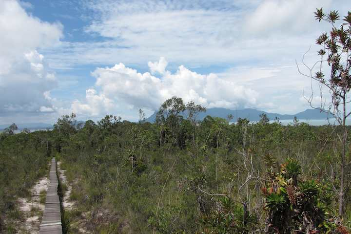 photo of view from plateau on Bako National Park Pandan Kencil path