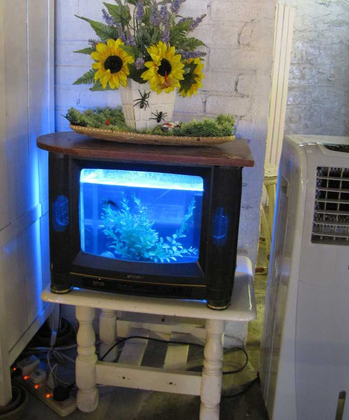 photo of old Fish Bowl TV