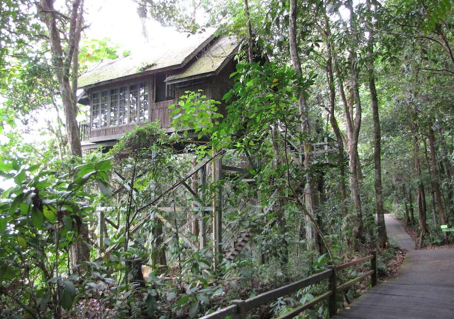 photo of Treetop Cabin, Permai Rainforest Resort