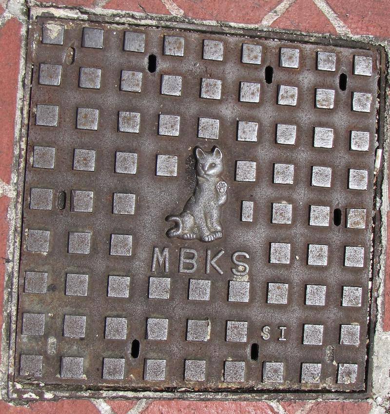 Manhole cover with a cat in the center